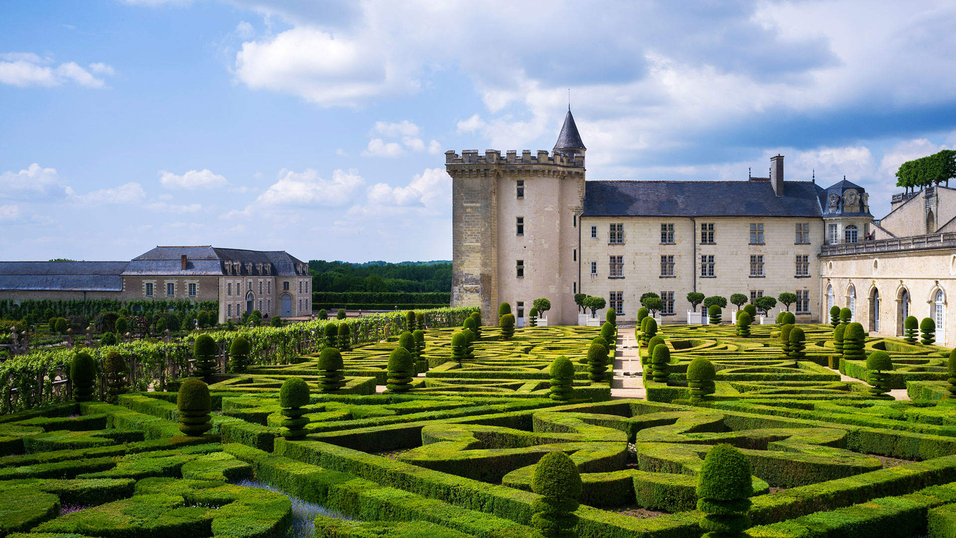 Viaje cultural a los Castillos del Loira